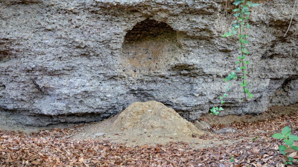 D_AÖ_Unterneukirchen_4_Geologische Orgeln (Dirschl Johann)