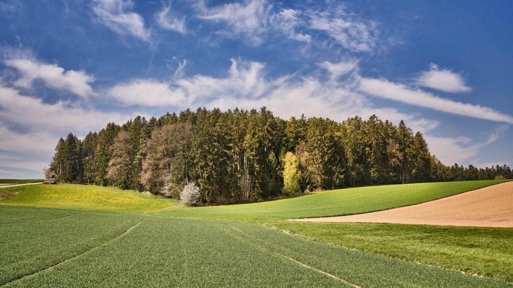 D_MÜ_Kirchisen_5_Umgebung (Dirschl Johann)