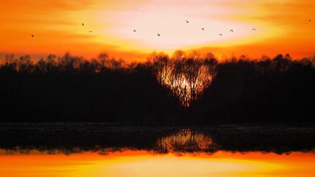 D_PAN_Ering_6_Sonnenuntergang am Vogelturm (Dirschl Johann)