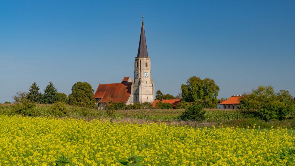 D_PA_Aigen_01_Kirche mit Rapsfeld (Dirschl Johann)