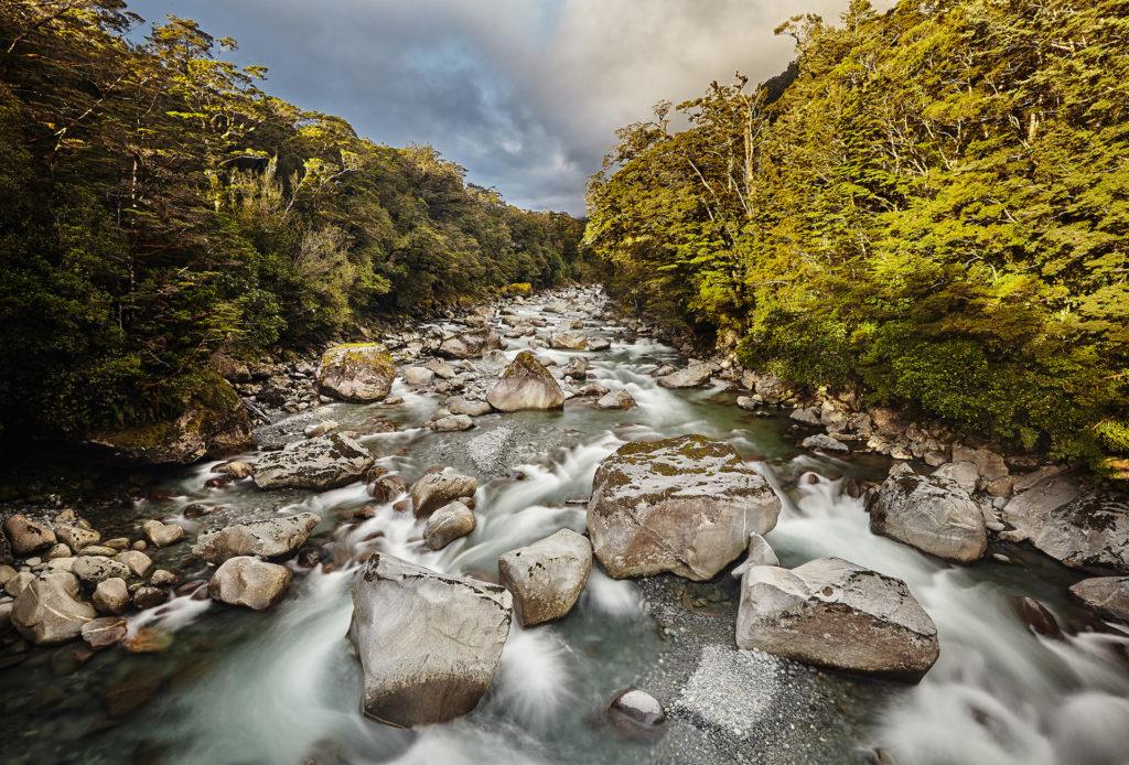 Neuseeland Bachlauf